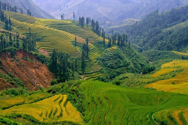 Hướng dẫn tour du lịch cho Việt Kiều đầy thú vị