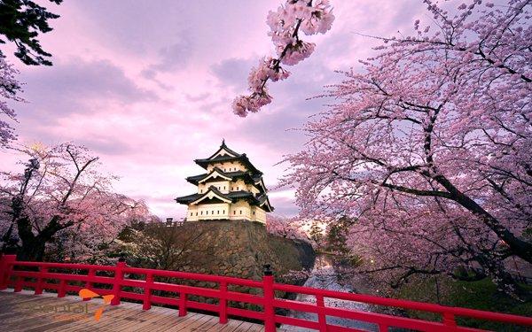 Những nét đặc sắc về văn hóa Nhật Bản