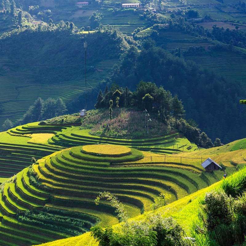 Phong cảnh Tây Bắc : Những tuyệt tác thiên nhiên ở Đất Việt